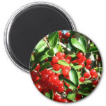 Holly Berries Refrigerator Magnet