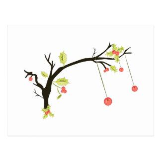 Holly Branch Postcard