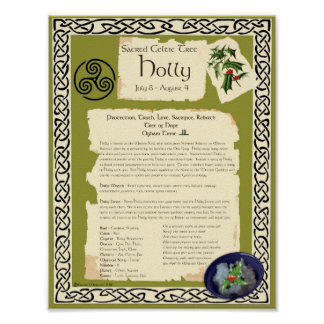HOLLY CELTIC SACRED TREE POSTER