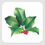 Holly Cluster Square Sticker