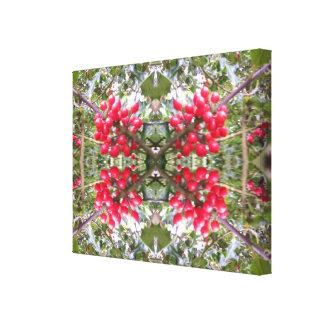 Holly Crystal Photo Fractal 2 Canvas Print
