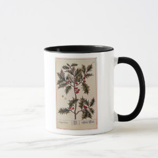 Holly from 'A Curious Herbal', 1782 Mug