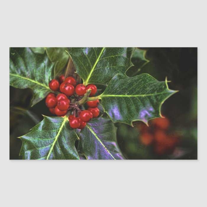 Holly Leaves and Berries Rectangular Sticker