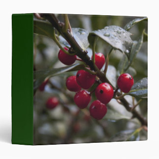 holly leaves and red berries, winter binder