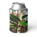 Holly Leaves I Holiday Christmas Nature Botanical Can Cooler