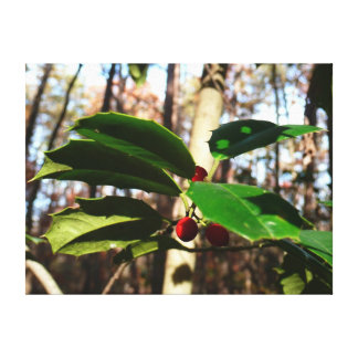 Holly Leaves I Holiday Christmas Nature Botanical Canvas Print
