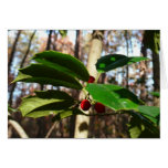 Holly Leaves I Holiday Christmas Nature Botanical Card