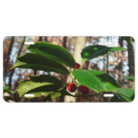 Holly Leaves I Holiday Christmas Nature Botanical License Plate