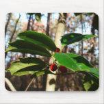 Holly Leaves I Holiday Christmas Nature Botanical Mouse Pad