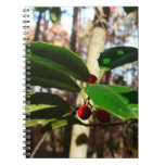 Holly Leaves I Holiday Christmas Nature Botanical Notebook