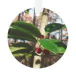 Holly Leaves I Holiday Christmas Nature Botanical Ornament
