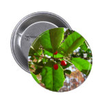 Holly Leaves II Holiday Nature Botanical Button