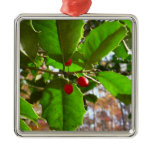 Holly Leaves II Holiday Nature Botanical Metal Ornament