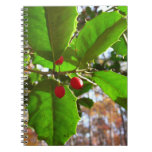 Holly Leaves II Holiday Nature Botanical Spiral Notebook