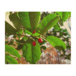 Holly Leaves II Holiday Nature Botanical Wood Wall Decor