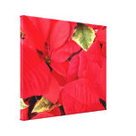 Holly Point Poinsettias Christmas Holiday Floral Canvas Print