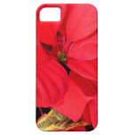 Holly Point Poinsettias Christmas Holiday Floral iPhone SE/5/5s Case