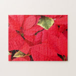 Holly Point Poinsettias Christmas Holiday Floral Jigsaw Puzzle