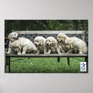 Holly s Half Dozen bench poster
