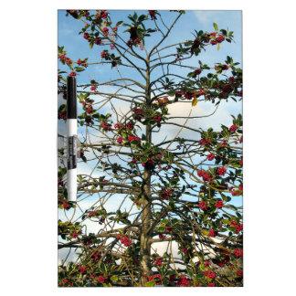 Holly tree Dry-Erase board