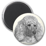 Holly, White Poodle Refrigerator Magnets