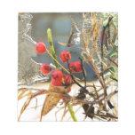 Hollyberries en hielo bloc de papel