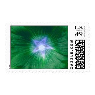 Hollyhock Flower Gorgeous Green Postage Stamp