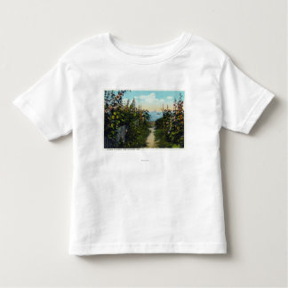 Hollyhock Lane View of the Harbor Toddler T-shirt