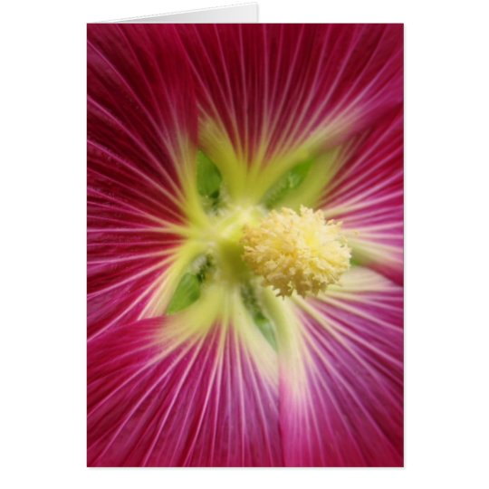 Hollyhock Note Card