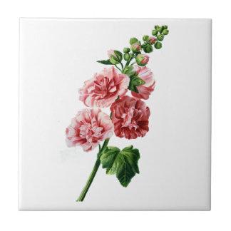 Hollyhock rosado extraído de la naturaleza azulejo cuadrado pequeño