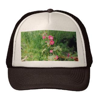 Hollyhock Trucker Hat