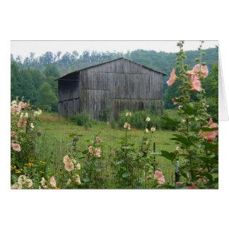 Hollyhocks and barn card