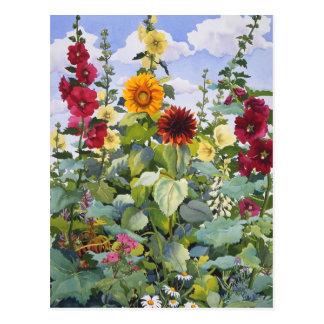 Hollyhocks and Sunflowers 2005 Postcard