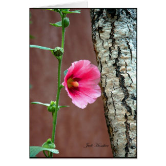 Hollyhocks Hold Up The Fence Card