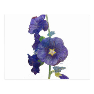 Hollyhocks púrpuras postales