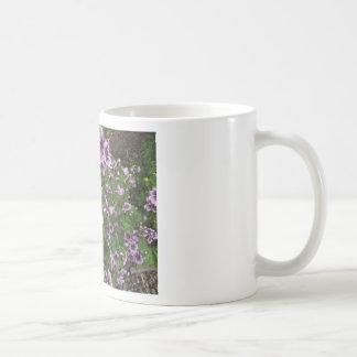 Hollyhocks púrpuras taza
