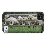 Holly's Half Dozen iPhone case iPhone 4 Case