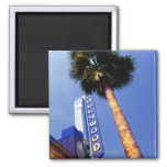 Hollywood Boulevard, Los Angeles Magnets