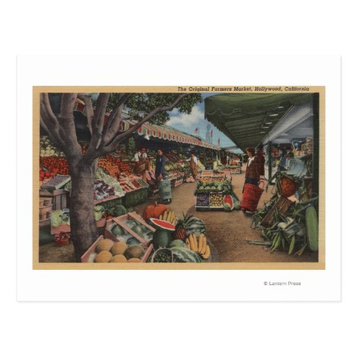 Hollywood, CAView of Original Farmer's Market Post Card