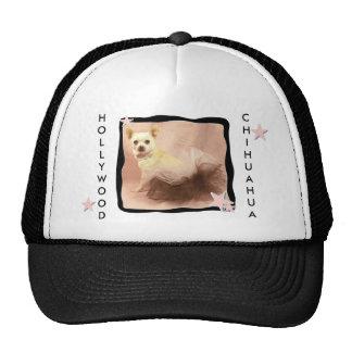 Hollywood Chihuahua Hat
