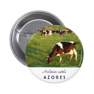 Holstein cattle 2 inch round button