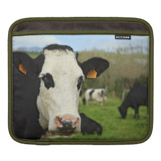 Holstein cattle sleeve for iPads