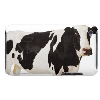 Holstein cow (Bos taurus) Barely There iPod Cover
