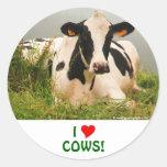 Holstein cow classic round sticker
