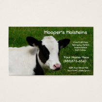 Holstein Cow Dairy Cattle Ranch Business Card