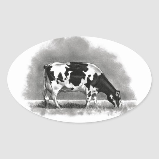 Holstein Cow Grazing: Realism Pencil Drawing Oval Sticker