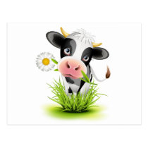 Holstein cow in grass postcard