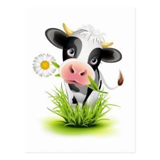Holstein cow in grass postcard