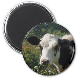 Holstein Cow Magnet