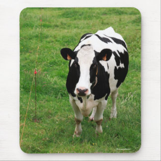 Holstein cow mouse pad